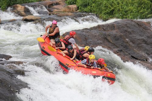 Gorilla Trek and White Water Rafting Tour