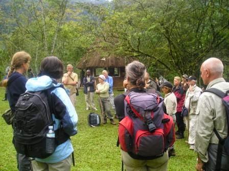 Gorilla-Trekking-Tour